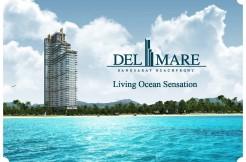 Delmare Salekit_Page_01