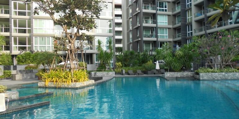 A401 Pool -Garden View